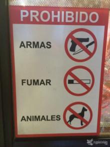 carteles panameños