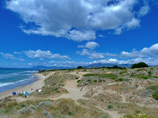 Playa-y-Dunas-Artola-Cabopino-Marbella