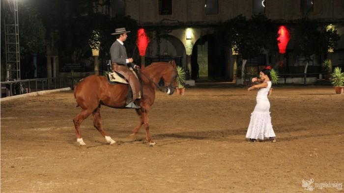 pasion y duende del caballo andaluz