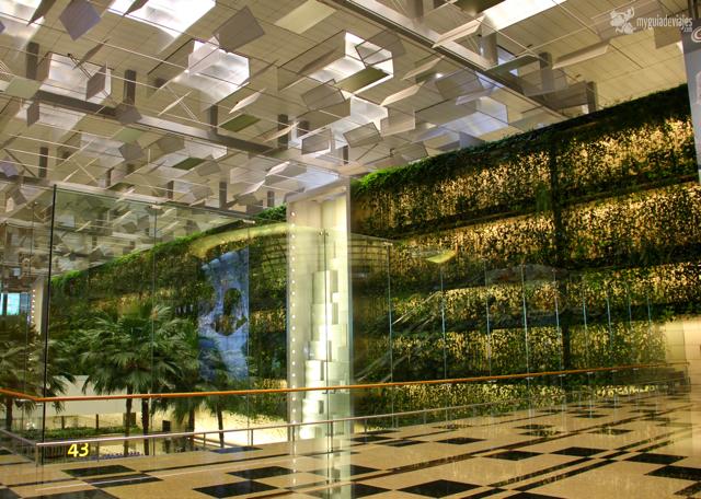 jardines aeropuerto changi