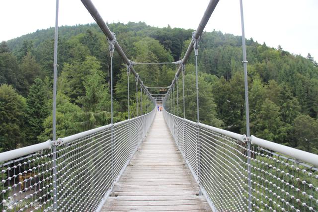 Puente en Steinwasen park, Alemania.