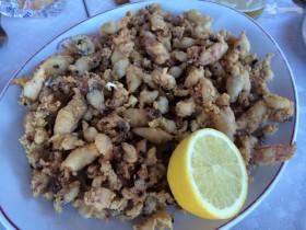 calamaritos