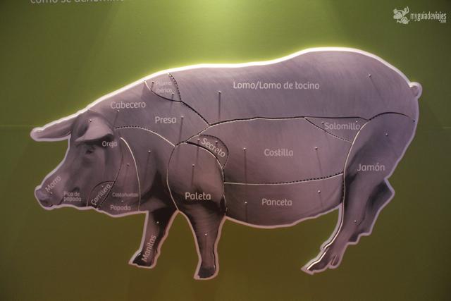 centro de interpretacion del cerdo iberico higuera la real