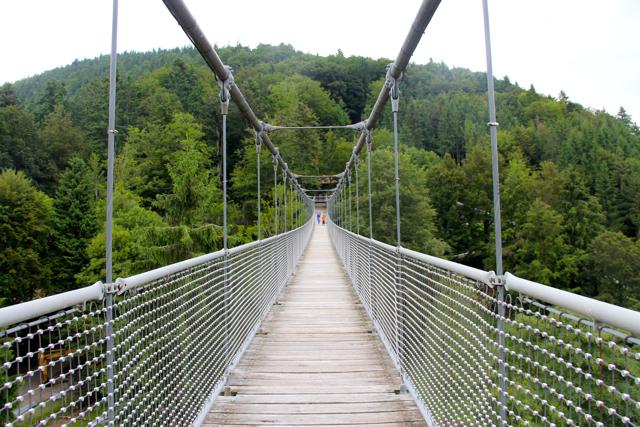 puente colgante steinwasen park