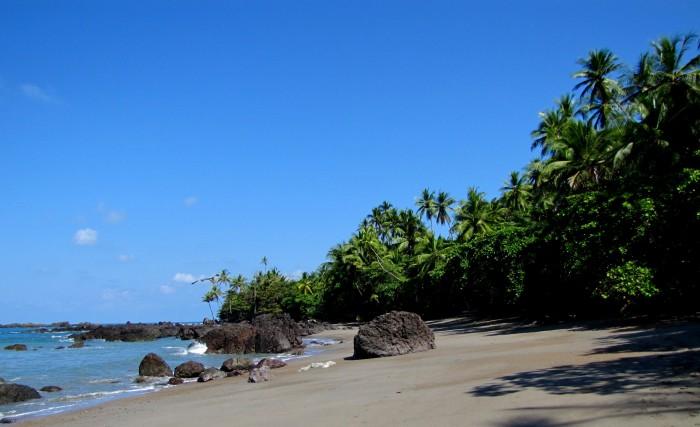 P N Corcovado Costa Rica. Imagen de wikipedia