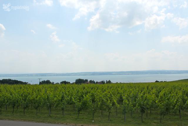 viñas alemania