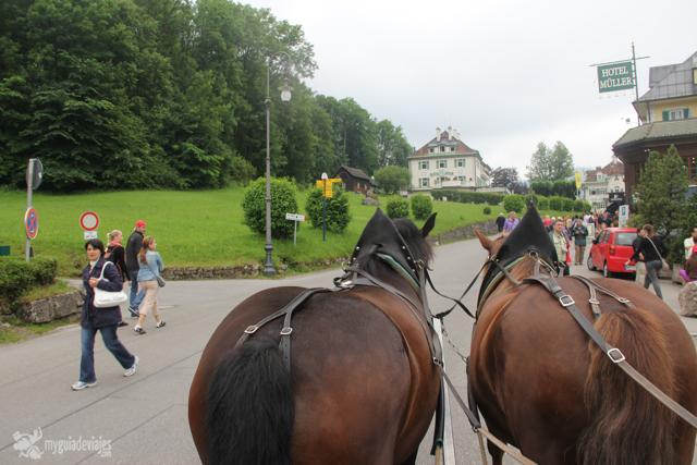 caballos castillo de Neuschwanstein