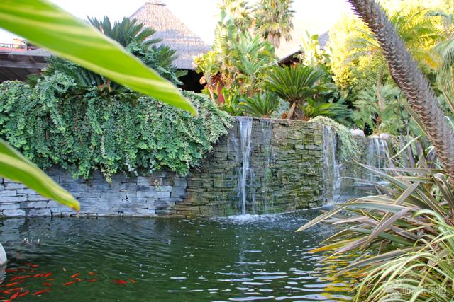 jardin tropical asia gardens