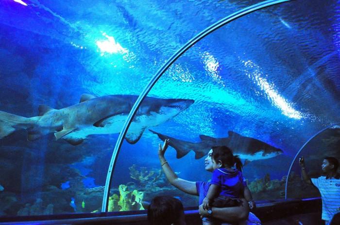 Aquaria Kuala Lumpur. Imagen de travelnix.com