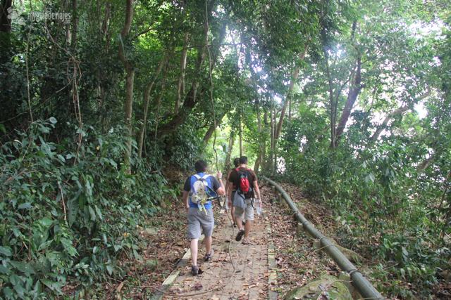 jungle trekking perhentian