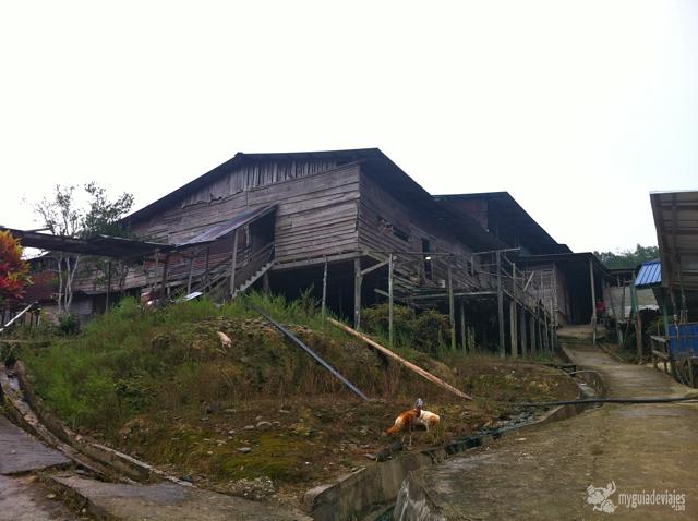 Longhouse o casa larga