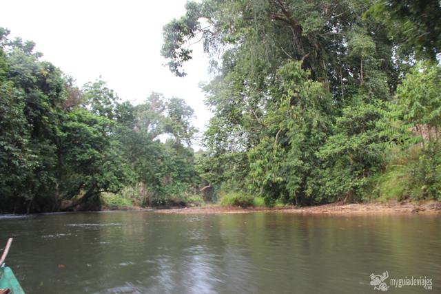 rio borneo