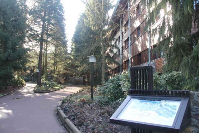 Exteriores del Disney Sequoia