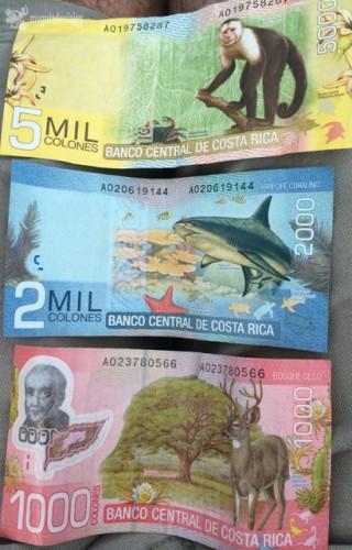 Los billetes de Costa Rica son así de coloridos y salvajes.