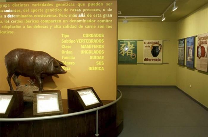 Museo del Jamón. Imagen de andaluciadeviaje.es