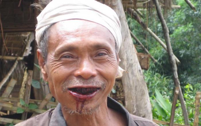 El Betel tiene efecto estimulante. Imagen wikipedia