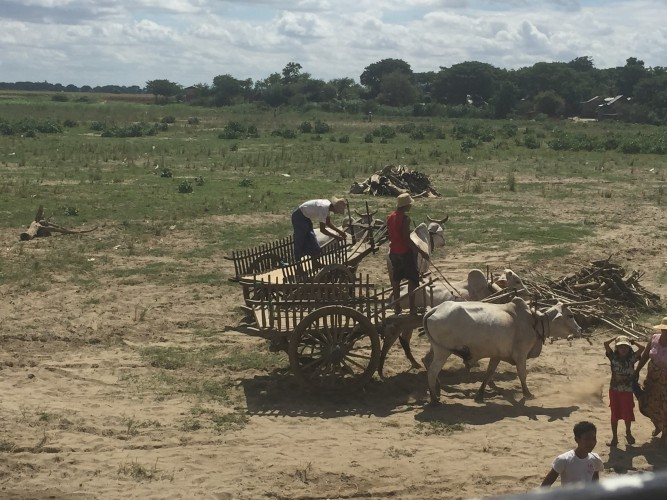 birmania rural