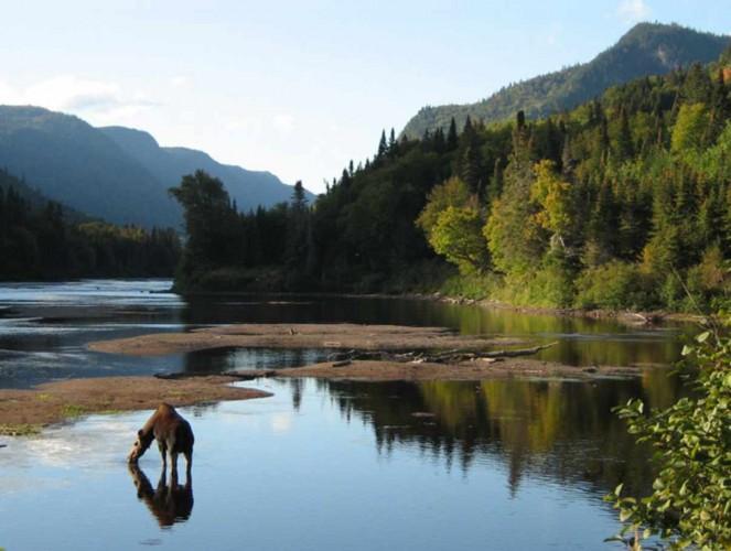 Imagen de quebecregion.com