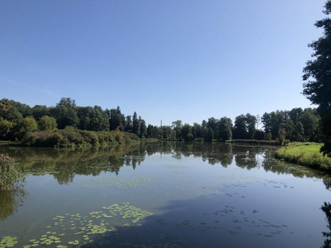 lago bialowieza