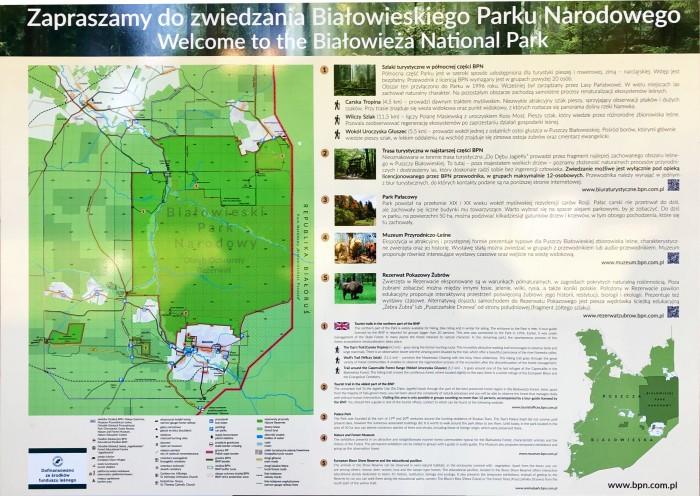 mapa bialowieza